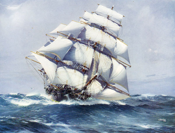 Image result for clipper ship sail